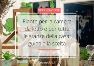 Read more about the article Piante per la camera da letto e per tutte le stanze della casa: guida alla scelta